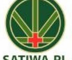 Cbd waporyzacja - Satiwa.pl