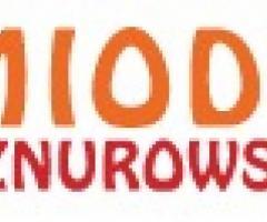 Miody ekologiczne Podlasie - miody-sznurowski.pl