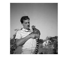 Projekt ekranizacji książek Arkadego Fiedlera - Biały Jaguar
