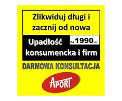 Upadłość konsumencka i firm już od 1990 zł.