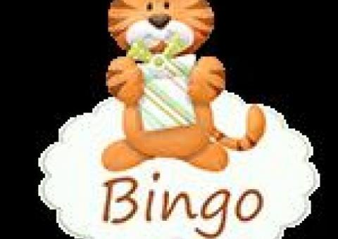 Bingo - winylowe tła fotograficzne